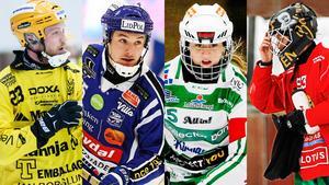 Vetlandas Johan Löfstedt, Villas Jesper Eriksson, VSK:s Malin Persson och AIK:s Linda Odén är fyra av totalt 20 kandidater.