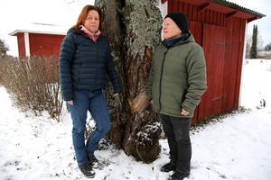 Systrarna Lisbeth och Agneta Björnebo i Orsa är oroliga för sin mamma och andra äldre som drabbas.