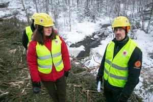 Martin Persson visar Sussi Stolt Stora Ensos avverkning vid sjön Yxen.