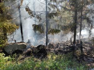 Bilden är tagen av räddningstjänsten i Skinnskatteberg vid skogsbranden och finns utlagd på deras hemsida, http://thefirefighter.se.