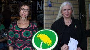 Miljöpartisterna Johanna Thurdin och Brita Wessinger försöker förstå väljarnas svek.
