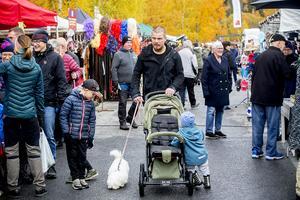 Mellan 8 och 10 000 besökare väntas till Sollefteå höstmarknad under helgen.