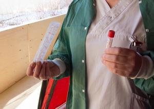 Provtagningen görs genom att en så kallad nässvabb, en pinne, som förs in långt in i näsan. Sen tas ytterligare ett prov långt ner i halsen. Tack vare att provet analyseras på laboratoriemedicin på Östersunds sjukhus kommer provsvaret redan inom ett dygn, mot tidigare två dygn då provet skickades till Stockholm för analys.