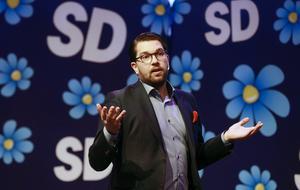 S angriper SD om beslut i EU om skydd mot cancerframkallande ämnen.                                                                                                                Foto: TT
