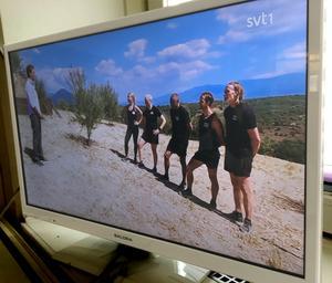 Programmet Mästarnas mästare på Sveriges television.