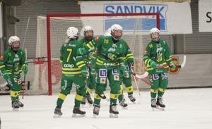 Regerande mästarna Skutskär möter AIK i semifinalserien.