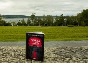 Tamar blickar ut över Storsjön. Strax nedanför parken vilar tågstationen och rälsen som för henne bort och hem.