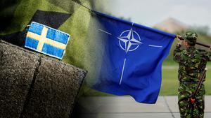 Att Moderaterna vill höja anslaget till försvaret har att göra med viljan att gå med i Nato, skriver Ingemar Nilsson (S). Bilder: Magnus Hjalmarson Neideman/SvD/TT / Vadim Ghirda/AP/TT