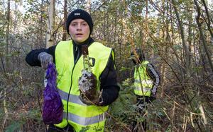 """Alexander Molin hittade bland annat en påse från Systembolaget och en tom spritflaska. """"Jag hittade också en hundbajspåse här i naturen"""
