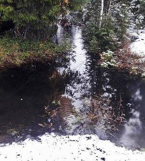 Ragunda. Vägtrumman nedtill i bild är översvämmad till följd av bäverdammen upptill i bild. Foto: Trafikverket