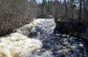 Stora mängder vatten forsar fram i Värstaån. Men det ska vara mindre än förra veckan.