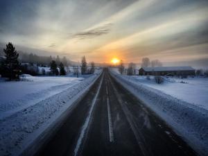 En tisdagsmorgon, på väg hem genom västernorrland. Solen är på väg upp genom diset. Foto: Joakim Öryd.