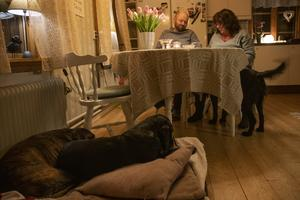 Hundarna är ett stort gemensamt intresse. Paret har nyligen köpt valpen Charlie tillsammans och de äger sedan tidigare tre hundar var.