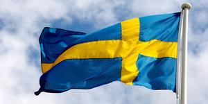 Den 6 juni hissas många flaggor. Det finns ett blandat utbud för att fira nationaldagen runt om i kommunen. Foto: Jan-Erik Henriksson/TT