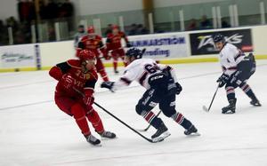 Slut för seniorhockey i Sveg? I vinter blir det åtminstone ingenting, det har hockeysektionens styrelse beslutat.