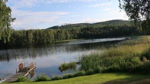 Stannade till vid vattnet och tog min sommarbild, det berättar så mycket. Vindstilla på Åstjärn en fin eftermiddag i sommar. Tycker att allt runtomkring är så fridfullt och vackert. Gräset är grönt,vattnet så stilla,Söderåsen i bakrunden, man kan sätta sig på bryggan och bara vara eller ta ett dopp så svalkande och skönt i värmen. Syns också lite av en eka kanske ta en roddtur till andra sidan sjön, eller fiska och hoppas på ett napp vilken lycka, så enkelt men rogivande. Sommaren är så fin och man längtar varje år till nästa sommar. Men på den här platsen är det ju bara så lugnt och skönt och det behöver vi alla, i vår omgivning att stanna upp och bara vara...… Foto: Aila Nyberg
