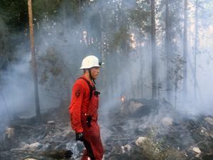 Branden vid Flögsjöberget blev aldrig så omfattande och vid 21-tiden hade man den under kontroll.