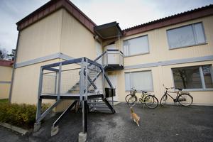 """""""Snickar-Magnus"""" vill att studentlägenheterna på Grankottevägen i Brickebacken räddas. Det skulle ge vinst på många sätt för samhället.FOTO: Lennart Lundkvist"""