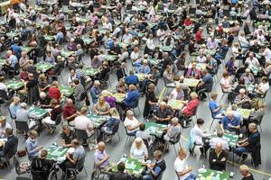 Bridgefestivalen i Örebro är ett stort evenemang som innebär 80 miljoner i intäkter för verksamheter i Örebro. Det samhällsekonomiska perspektivet har en viktig roll i utbildningen för projektledare inom besöksnäringen, som får en omstart i Örebro i höst. Foto: Troy Enekvist / arkivbild