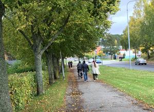 Gång- och cykelvägar bör av säkerhetsskäl vara separerade från biltrafiken, gärna med grönska, som här vid Holmfastvägen. Foto: Södertälje kommun