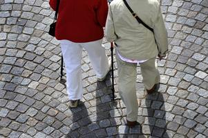 Antalet fattiga pensionärer kommer att bli fler, eftersom pensionssystemet inte är anpassat till den demografiska utvecklingen.