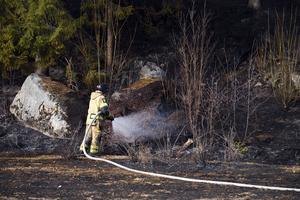 Det har kommit in flera larm om gräs- och skogsbränder den senaste veckan och enligt Mattias Andersson är det torrt just nu.