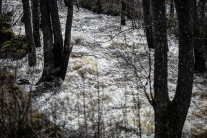 Vattnet går högt över den normala nivån.