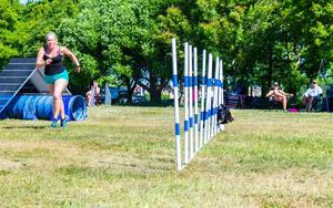 Både förare och hund förväntades hålla fart under lördagens agilitytävlingar.