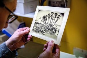 Sara Norberg från Utansjö var en äventyrlig kvinna i slutet av 1800-talet. Hennes fotosamling med bilderna bland annat från Afrika skänktes till länsmuseet  av en arvinge.