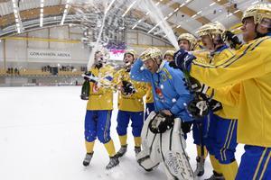 Sverige firar efter VM-guldet i Sandviken. Foto: Janerik Henriksson/TT
