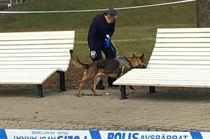 Polisen har sökt av den misstänkta brottsplatsen med hund.