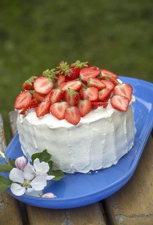 Tårta i all ära, men (V) vill något mer. Foto: Leif R Jansson /TT/