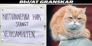 Foto: Irene Wallgren, Fredrik Sandberg / TT