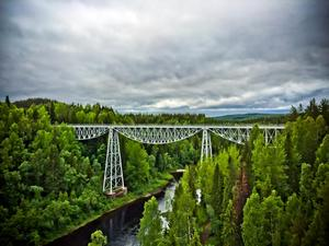 Juni:  Tallbergsbroarna i Nyåker, Västerbotten.