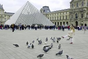 Duvorna trivs lika bra som turisterna vid Louvren i Paris.