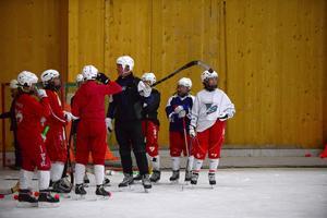 Grycksbo IF har ett ungt och talangfullt lag, som har vunnit den norra allsvenskan två gånger de senaste tre åren.