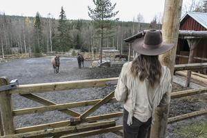 I hagen går quarterhästarna Utah, Bette och Cody. Quarterhästar är trygga och pålitliga hästar med starka nerver, menar Monique Vermeer.