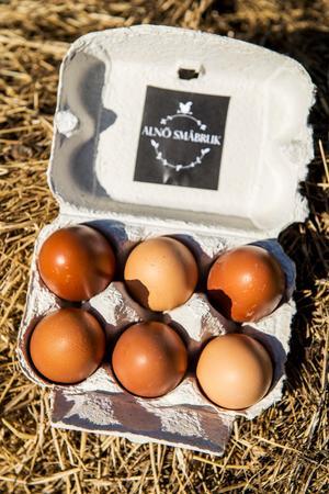 När Sofia Engberg skaffade höns valde hon rasen maranhöns eftersom den ger närmast chokladbruna ägg. Hon har även Hedemorahöns och hoppas kunna utöka äggförsäljningen i sommar.