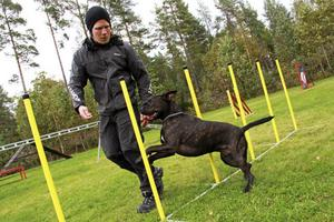 Tobias Vikström tränar agility med amstaffen Deamon.