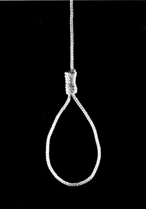 Avrättningen fastställs att genomföras genom hängning hösten 1698 på galgbacken i Saltåsen. Foto: Janerik Henriksson/TT