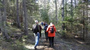 Vandring på väg upp mot Ringkallen, vi följde Världsarvsleden. Foto: Åke Öberg