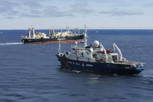 Ett Greenpeace fartyg bevakar ett japanskt valjaktsfartyg. Foto: Jeremy Sutton-Hibbert / Greenpeace / SCANPIX