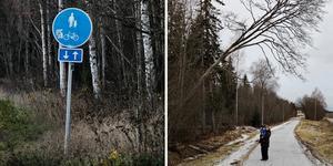 Ett träd vid gång- och cykelvägen längs Johannedalsvägen är farligt, skriver signaturen JL.