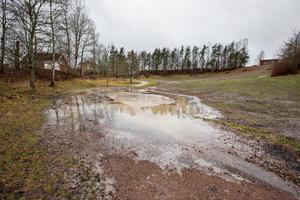 Den anlagda fjärilsparken i Nasta orsakade översvämning på den grusade gångstigen.