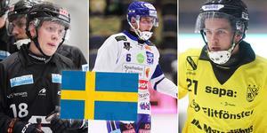 Albin Airisniemi och Tobias Nyberg gör landslagsdebut i helgen. Martin Karlsson (i mitten) har spelat två landskamper tidigare.
