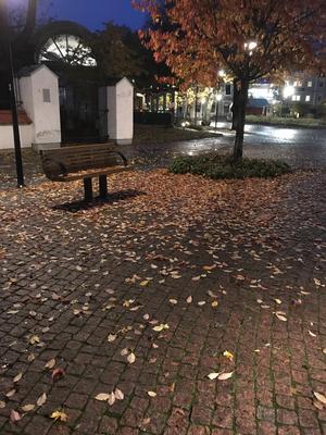 Bilden tagen i mitten av oktober vid gångfartsområdet vid Ringgatan i Sala. Foto: Marie Pettersson