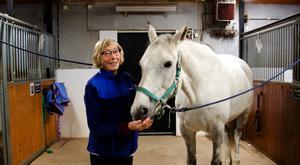 Hästen Rory är Carin Nyströms favorit.