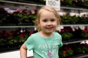 Molly Engström Ny, 4, Granlo: – Plantera solrosor på rummet tycker jag är fint.