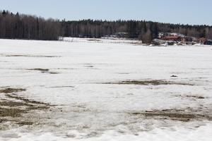 Området som kommunen planerar att köpa vid Visentparken är cirka 120 fotbollsplaner stort.