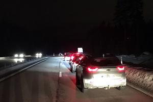 Två lösspringande hästar blev påkörda på E16 mellan Borlänge och Falun på tisdagskvällen, vilket orsakade långa köer i trafiken åt båda hållen.